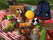 土撥鼠野餐實景