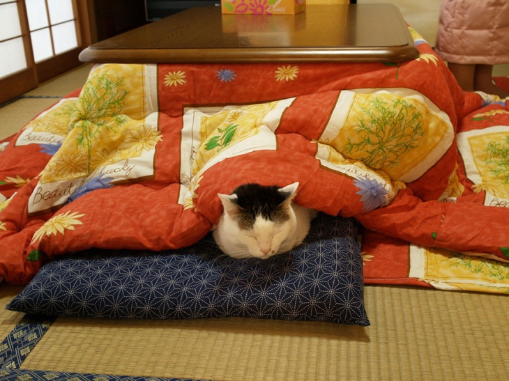adaymag-the-kotatsu-you-will-never-want-to-leave-08