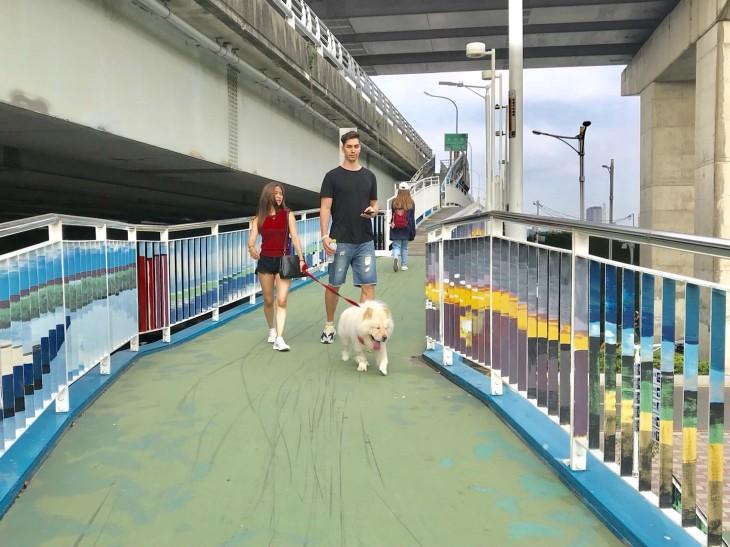 華江河濱公園_180525_0002.jpg